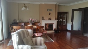 istanbul_dragos_furnished_flat_for_rent (1)
